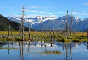Alaska und Yukon Adventure