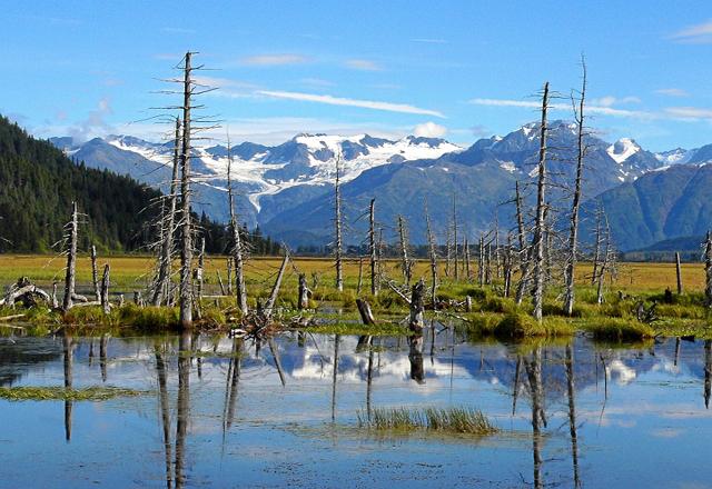Entdecken Sie die Schönheit der Landschaft in Alaska
