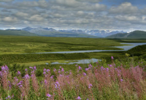 Die Natur Alaskas
