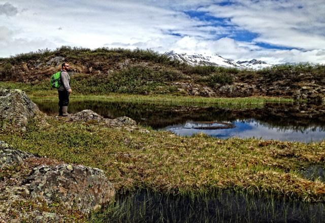 Einzigartige Natur in Alaska