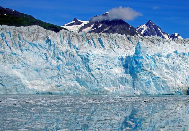 Glacier Bay Lodge - Gletscher und Walbeobachtungstour